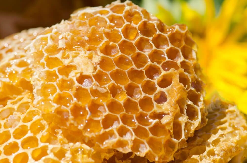 這天然食物能夠抗病毒提升免疫力,新冠狀病毒期間必備!